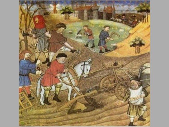 agricultura feudal
