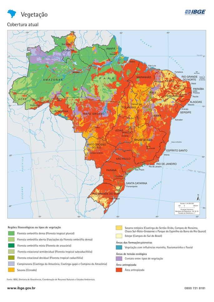 Mapa da vegetação brasileira