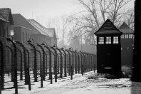 3 Histórias heroicas e inspiradoras sobre o Holocausto