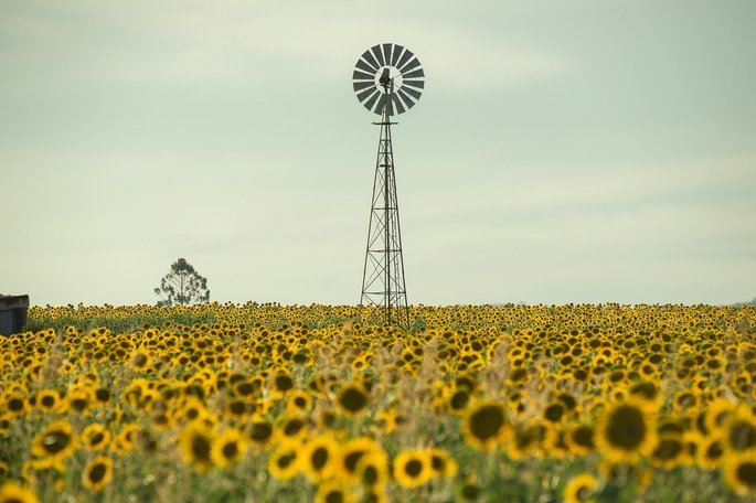 Exemplo paisagem modificada 2