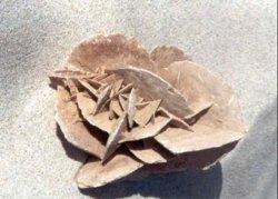 Rosa do Deserto - mineral