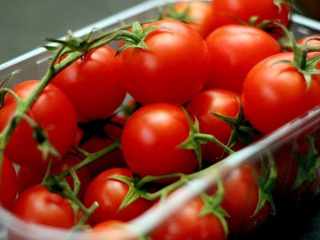 tomate fruto