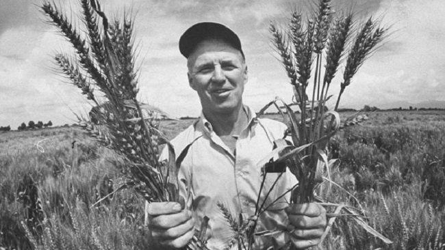 Norman Bourlaug